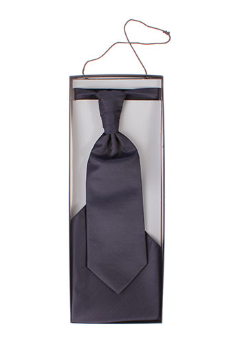 digel cravates homme de couleur bleu